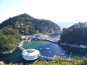 下田海中水族館のドローン写真