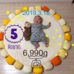 【育児】生後5ヶ月おめでとう!