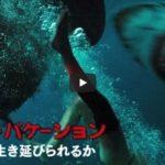 【映画】ロスト・バケーション