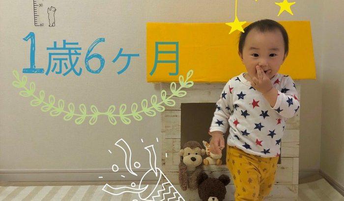 【育児】1年6ヶ月おめでとう!