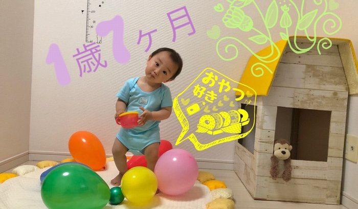 【育児】1歳7ヶ月おめでとう!