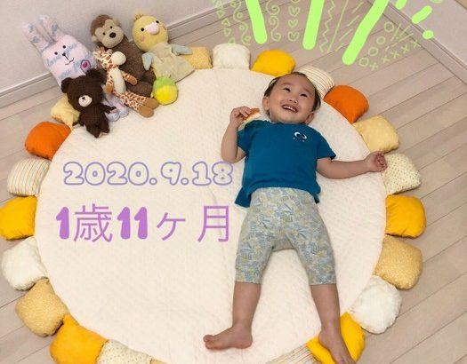【育児】1歳11ヶ月おめでとう!
