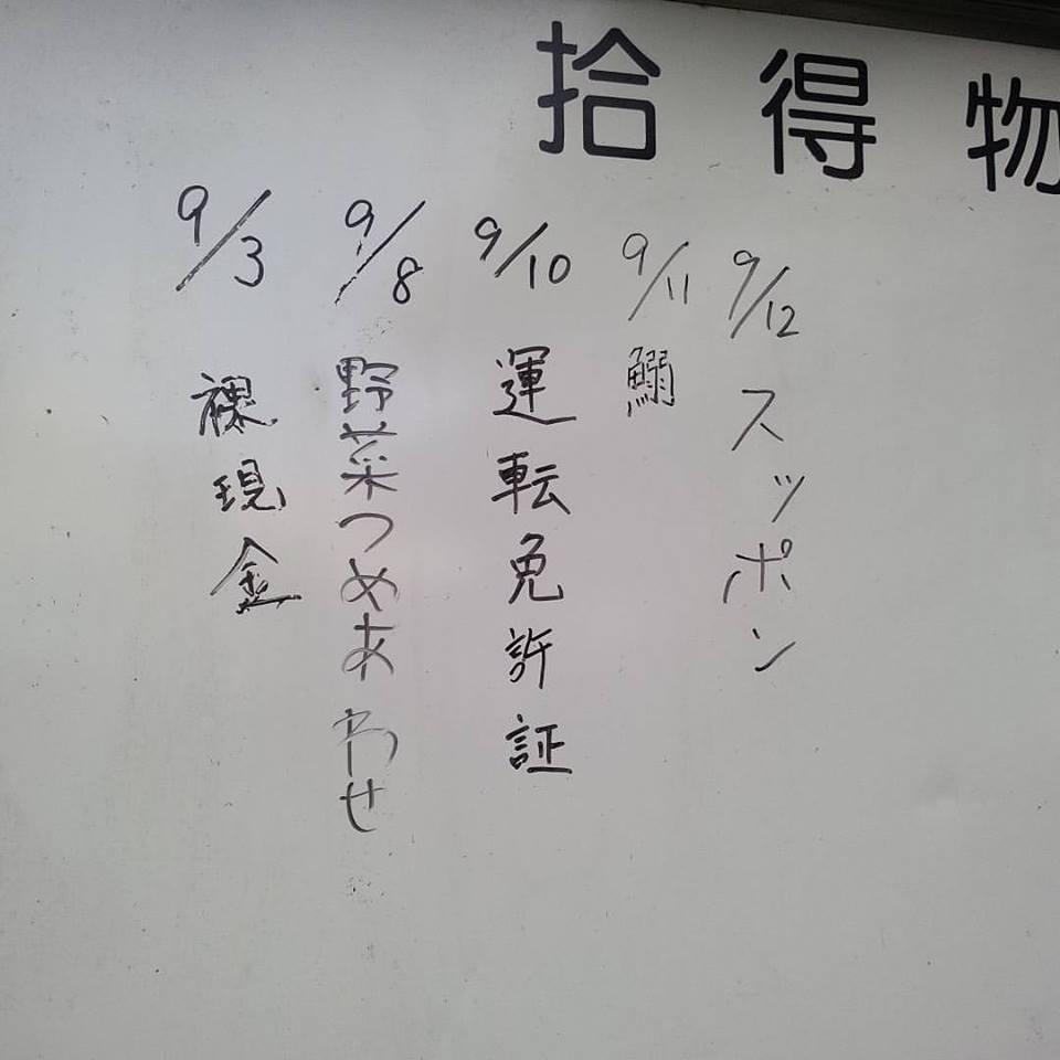 【日常】 築地市場の落とし物
