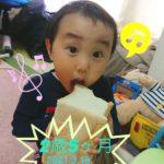 【育児】2歳5か月おめでとー!