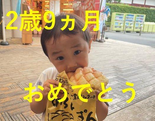 【育児】2歳9か月おめでとーーー!
