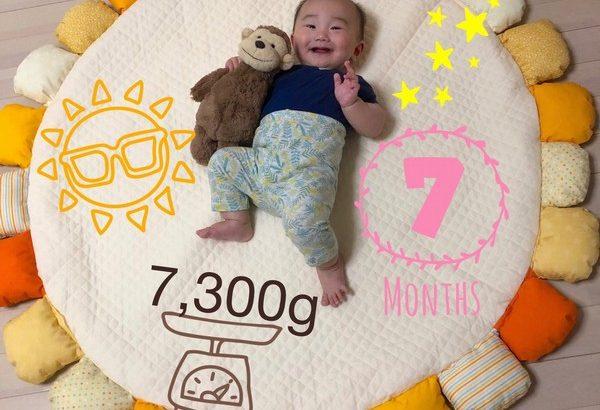 【育児】今日でちょうど7ヶ月!