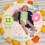 【育児】11ヶ月おめでとう!!