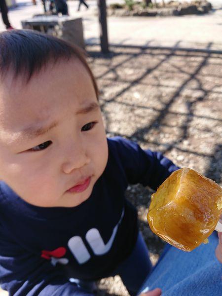紅あずまの大学芋を見る2歳児