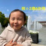 【育児】今日で2歳6か月