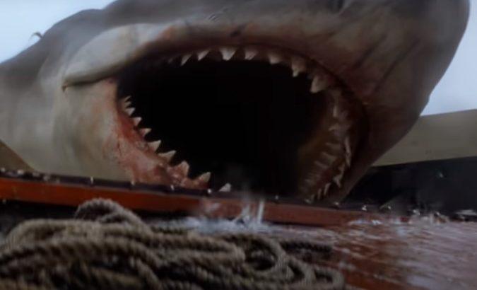 【映画】JAWS(ジョーズ)