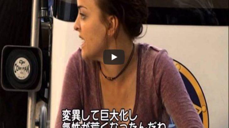 【映画】新アリゲーター 新種襲来
