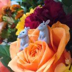 【日常】 シャクレルプラネット2 ウサギ再び編