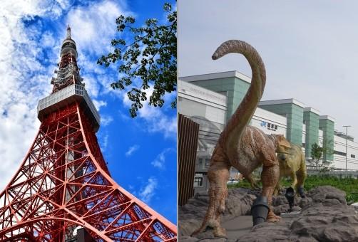 東京と福井の往復